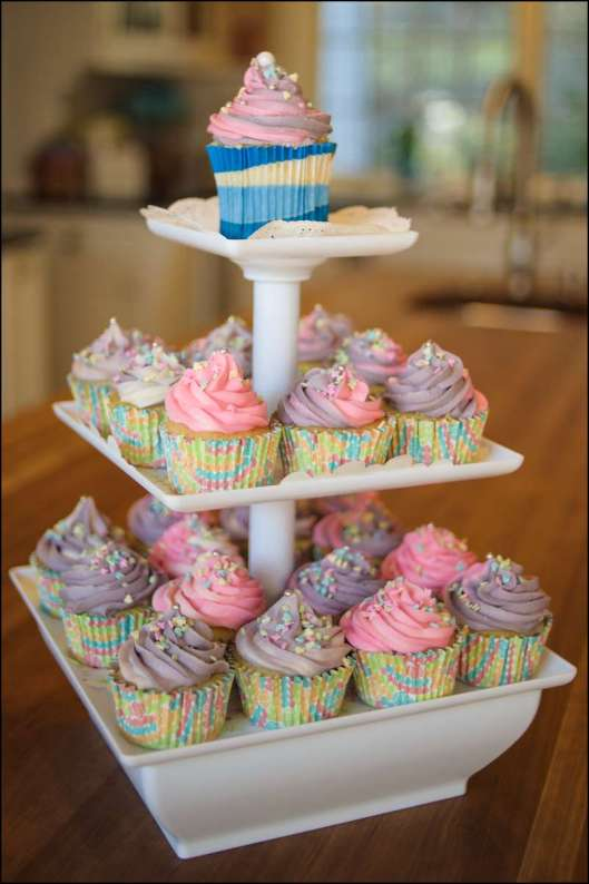 Spring Birthday Party Cupcakes