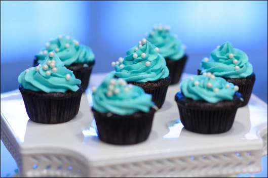 stella-and-dot-cupcakes-5