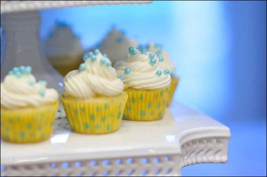 stella-and-dot-cupcakes-7