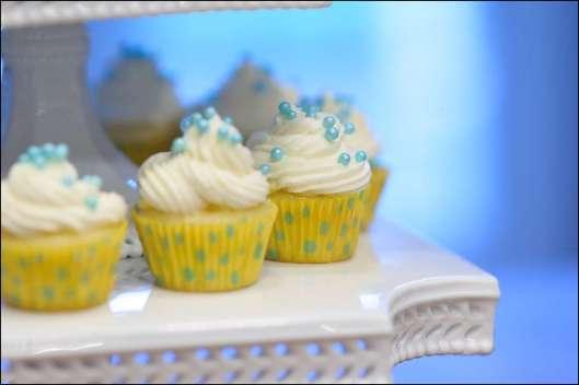 stella-and-dot-cupcakes-7