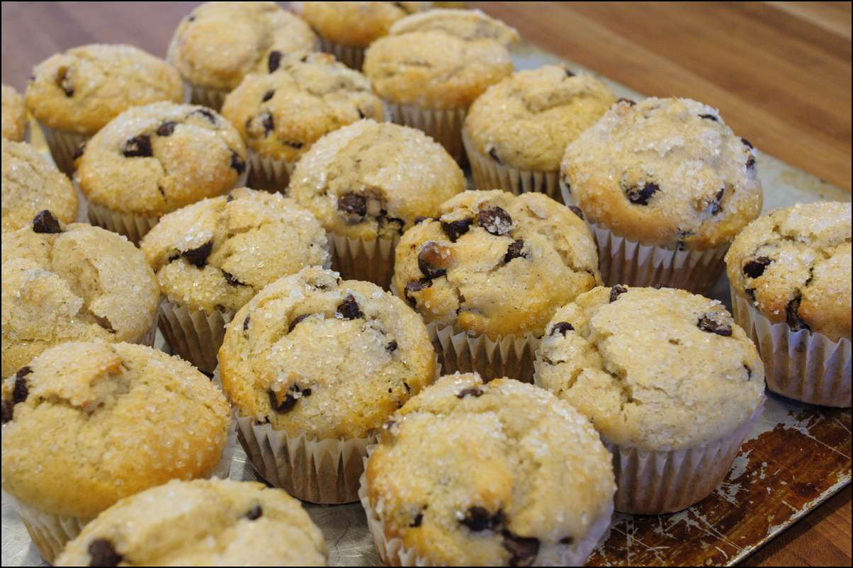Recipe For Chocolate Chip Muffins With Whole Wheat Flour