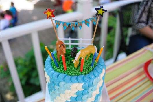 cowgirl-horse-cake-2