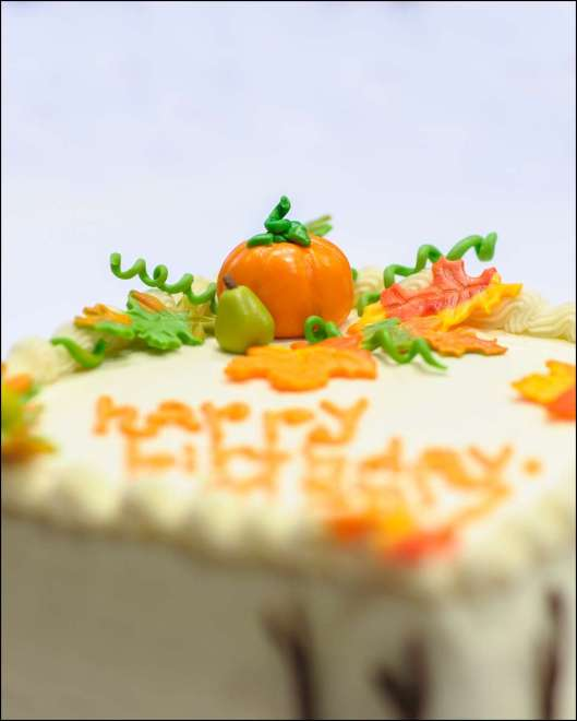 fall-birthday-cake-8