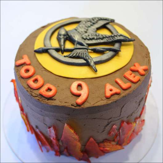 hunger-games-cake-13