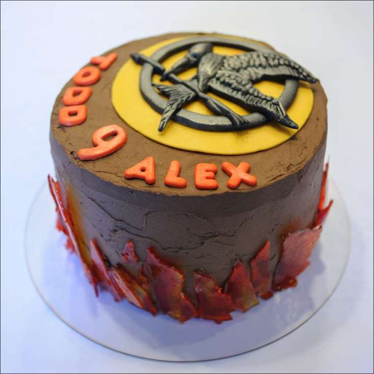 Phenomenal Hunger Games Cake 15 Gray Barn Baking Funny Birthday Cards Online Elaedamsfinfo