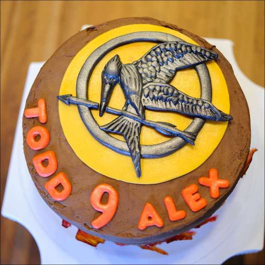 hunger-games-cake-4