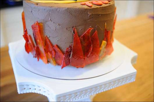 hunger-games-cake-8