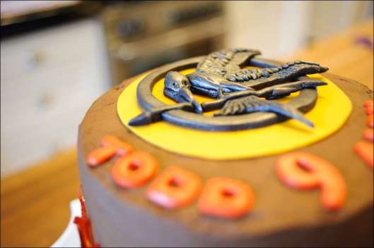 hunger-games-cake-9