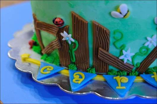 farm-cake-18