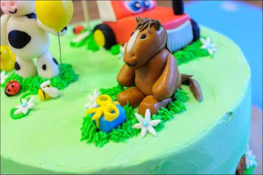 farm-cake-23