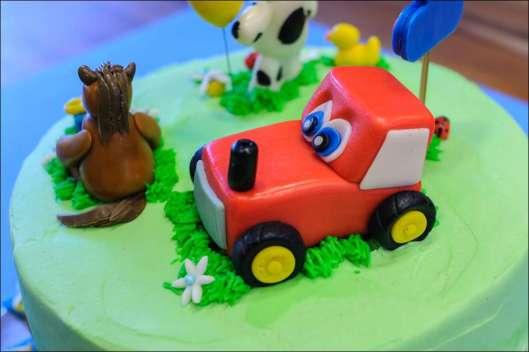 farm-cake-28
