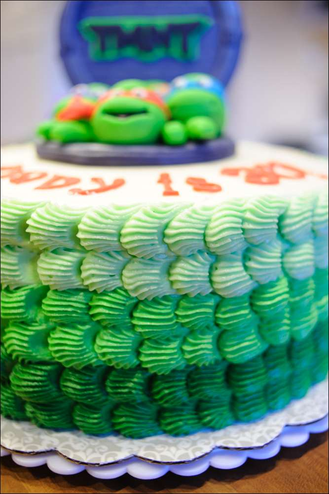 Tmnt Cake Gray Barn Baking