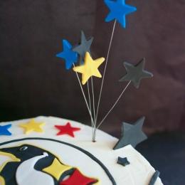 pitt sport cake_9